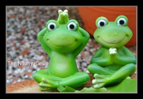 Zen Frogs