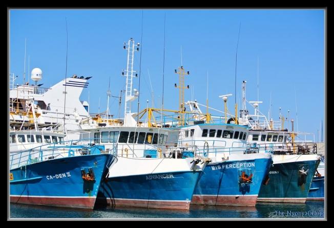 Boats docked @ Freemantle